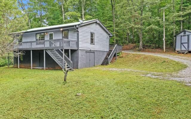 2161 CHEASTNUT GAP, Blue Ridge, GA 30513 (MLS #310604) :: RE/MAX Town & Country