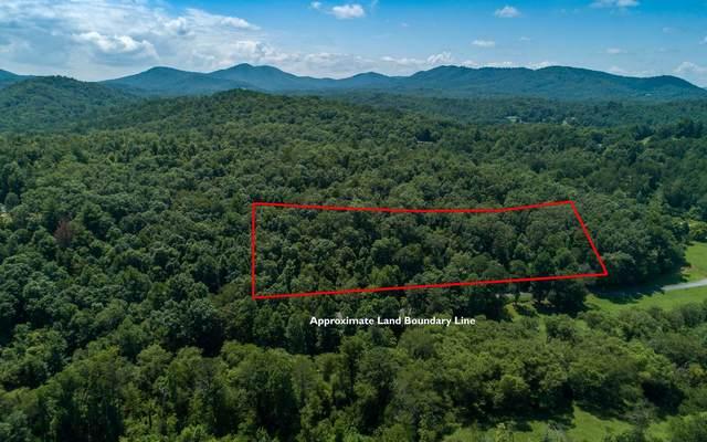 17 Prosperity Dr, Warne, NC 28909 (MLS #310618) :: Path & Post Real Estate