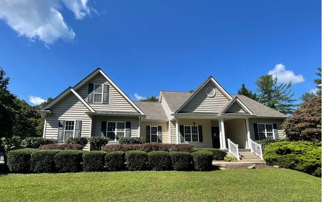 115 Fitts Ct., Blue Ridge, GA 30513 (MLS #310620) :: RE/MAX Town & Country