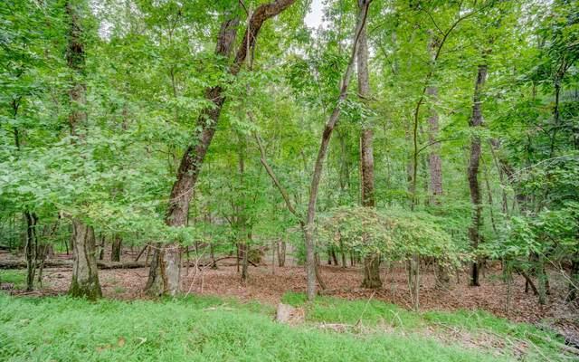 224R Foxhound Dr, Ellijay, GA 30540 (MLS #310655) :: Path & Post Real Estate