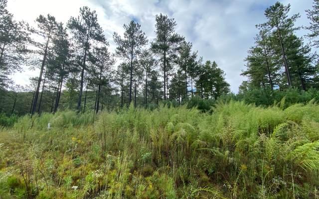 LT334 Thirteen Hundred, Blairsville, GA 30512 (MLS #310686) :: Path & Post Real Estate