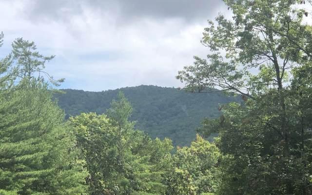 7.3AC Timber Ridge And Ske, Blairsville, GA 30512 (MLS #310721) :: Path & Post Real Estate