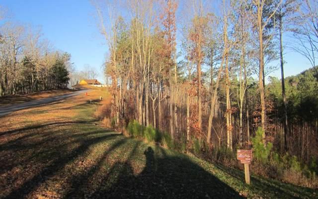 LT 60 Ridge Peak View, Blairsville, GA 30512 (MLS #310737) :: Path & Post Real Estate
