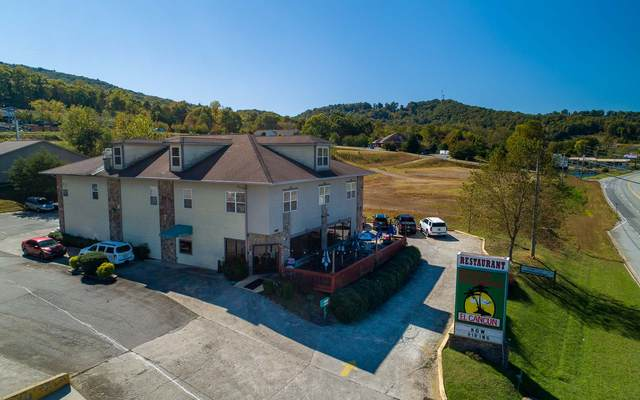 3360 Us 76 West, Hiawassee, GA 30546 (MLS #311439) :: RE/MAX Town & Country