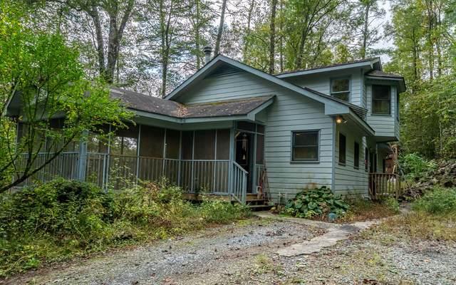 397 Conasauga Rd, Ellijay, GA 30540 (MLS #311471) :: Path & Post Real Estate
