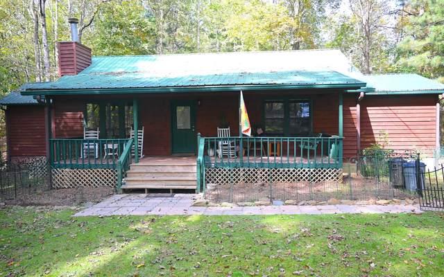 1704 Newport Dr, Ellijay, GA 30540 (MLS #311493) :: Path & Post Real Estate
