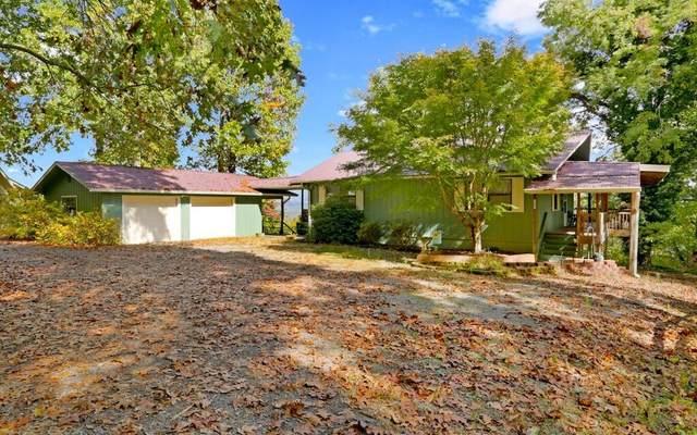 1089 Frog Pond Road, Hiawassee, GA 30546 (MLS #311506) :: RE/MAX Town & Country