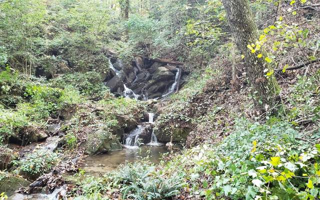 655 Mount Sequoyah Rd, Jasper, GA 30143 (MLS #311510) :: Path & Post Real Estate