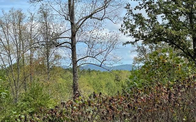 33 Pleasant Meadows, Blairsville, GA 30512 (MLS #311512) :: RE/MAX Town & Country