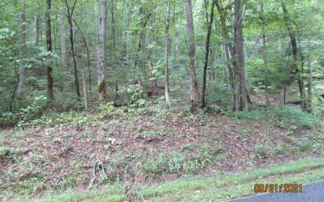 Low Gap Road, Hayesville, NC 28904 (MLS #311533) :: RE/MAX Town & Country