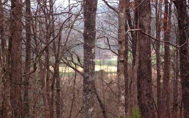 LT 65 Timberline Acres, Young Harris, GA 30582 (MLS #200912) :: RE/MAX Town & Country