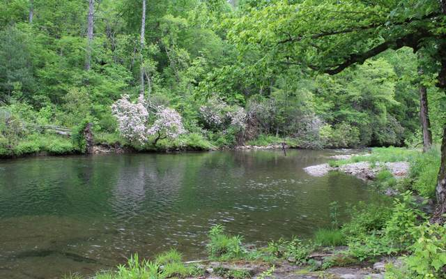 LT 14 Barlow Fields, Hayesville, NC 28904 (MLS #234403) :: RE/MAX Town & Country