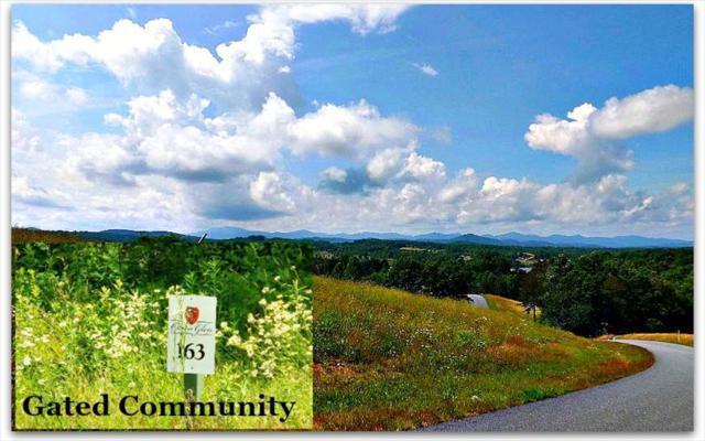 LT163 Owen Glen, Blairsville, GA 30512 (MLS #248392) :: RE/MAX Town & Country