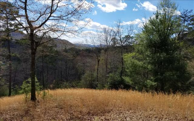 15 Moore Acres, Hayesville, NC 28904 (MLS #249934) :: RE/MAX Town & Country