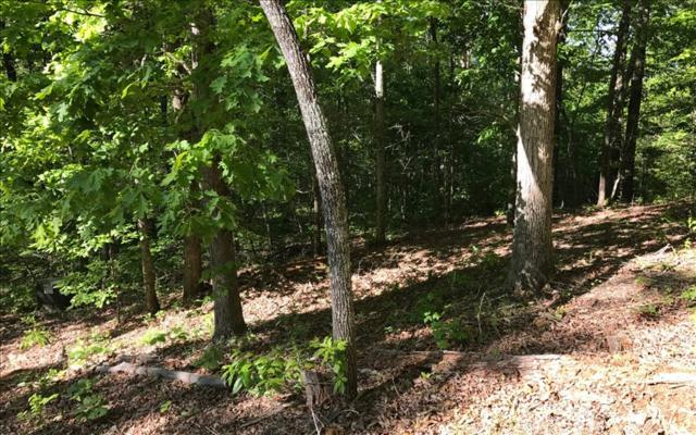 LOT 2 Woods Of Hunter, Hayesville, NC 28904 (MLS #252993) :: RE/MAX Town & Country