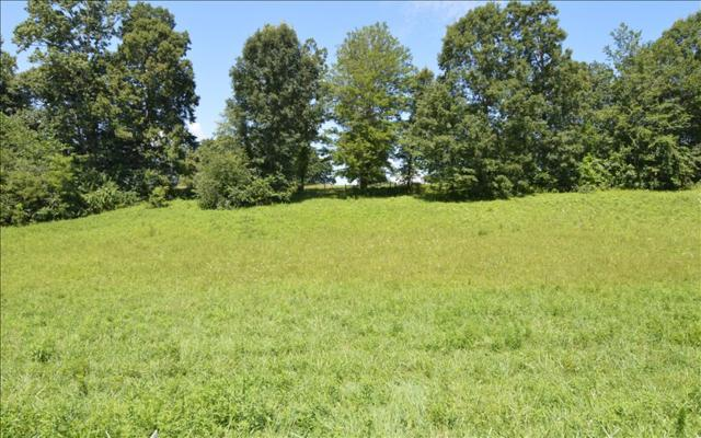 LOT 4 Chatuge Shores Ovlk, Hayesville, NC 28904 (MLS #255054) :: RE/MAX Town & Country