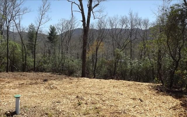 LT 10 Hightower Ridge, Hiawassee, GA 30546 (MLS #261747) :: RE/MAX Town & Country