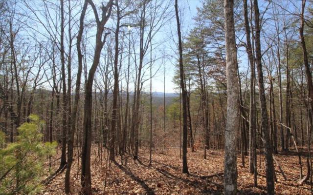 LT 49 Mission Ridge, Hayesville, NC 28904 (MLS #261893) :: Path & Post Real Estate