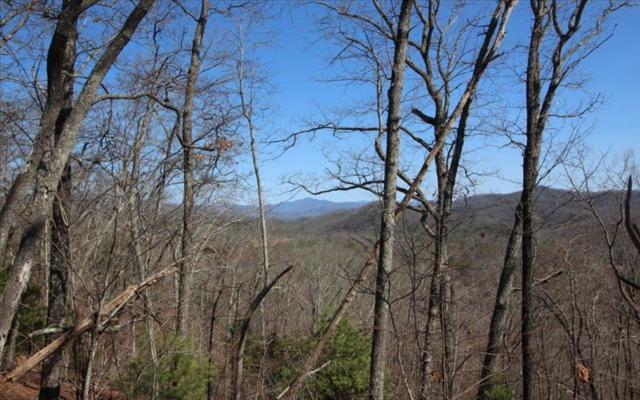 #46 MISSION RIDGE, Hayesville, NC 28904 (MLS #261897) :: Path & Post Real Estate
