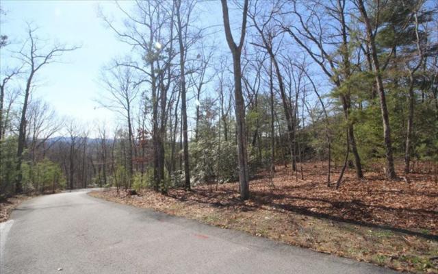 LT 41 Nantahala Lane, Hayesville, NC 28904 (MLS #261900) :: Path & Post Real Estate