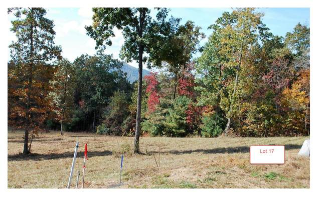 LT17 Jack Groves Lane, Hayesville, NC 28904 (MLS #262882) :: Path & Post Real Estate
