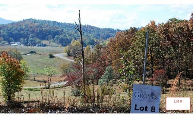 LT8 Jack Groves Lane, Hayesville, NC 28904 (MLS #262890) :: Path & Post Real Estate