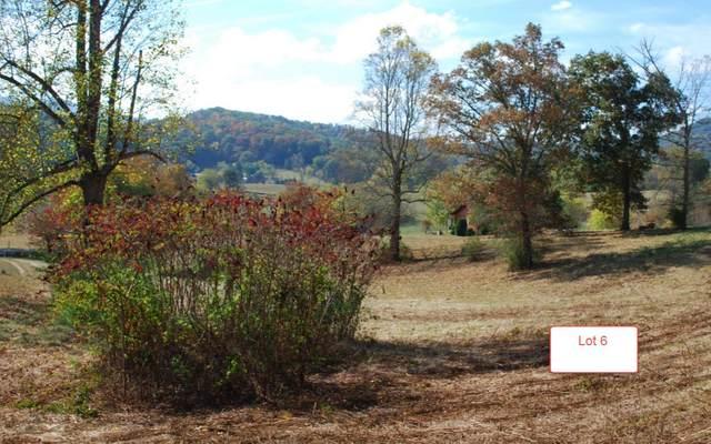 LT6 Jack Groves Lane, Hayesville, NC 28904 (MLS #262892) :: Path & Post Real Estate