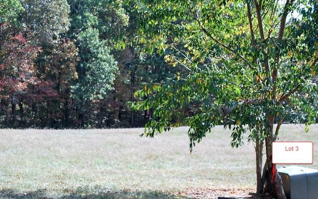 LT3 Jack Groves Lane, Hayesville, NC 28904 (MLS #262894) :: Path & Post Real Estate
