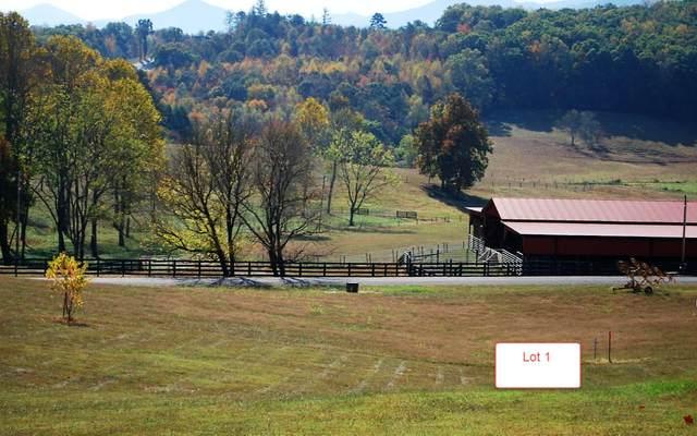 LT1 Jack Groves Lane, Hayesville, NC 28904 (MLS #262896) :: Path & Post Real Estate