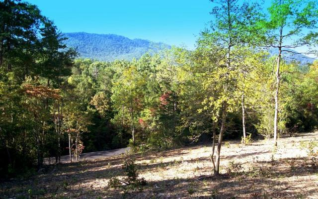 22 Thunder Rd., Hayesville, NC 28904 (MLS #263439) :: RE/MAX Town & Country