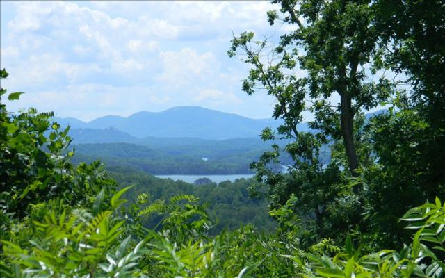 Lt 42&43M The Ridges, Hayesville, NC 28904 (MLS #264681) :: RE/MAX Town & Country