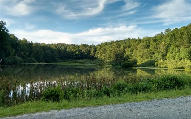 3.61 Double Line Road, Ellijay, GA 30540 (MLS #264953) :: RE/MAX Town & Country