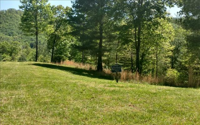 LT 11 Point Overlook Trail, Murphy, NC 28906 (MLS #267258) :: RE/MAX Town & Country