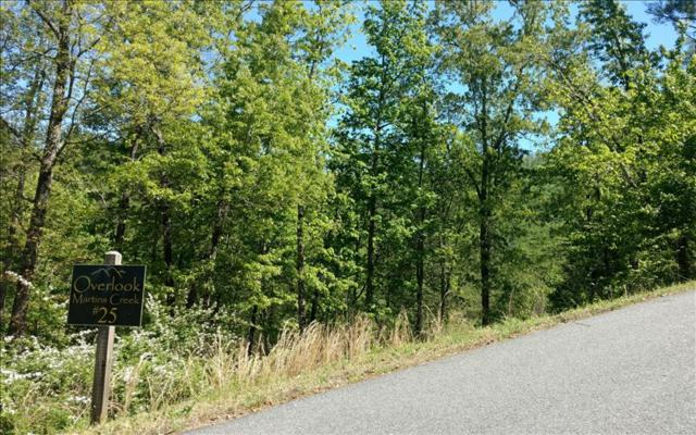 LT 25 Point Overlook Trail, Murphy, NC 28906 (MLS #267266) :: RE/MAX Town & Country