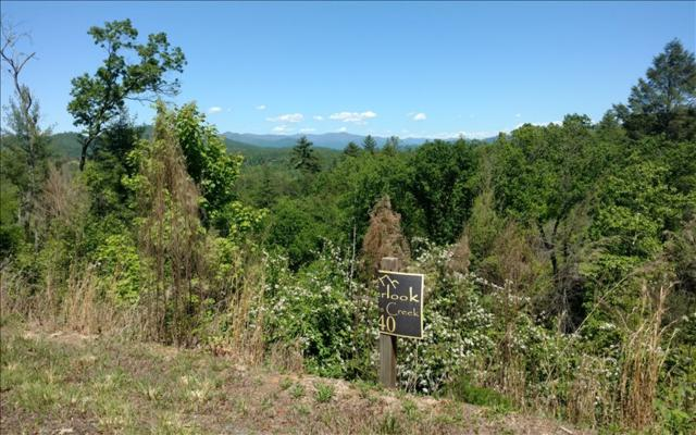 LT 40 Point Overlook Trail, Murphy, NC 28906 (MLS #267277) :: RE/MAX Town & Country