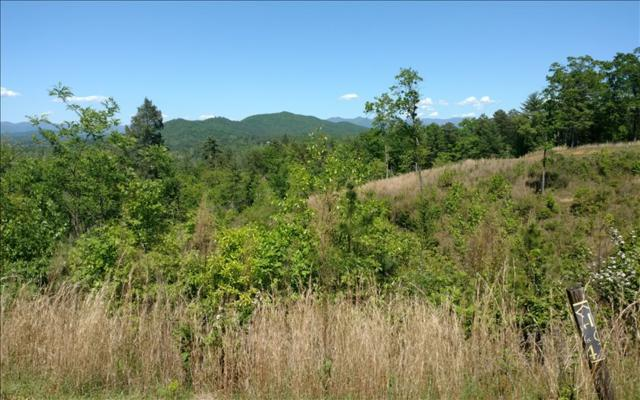 LT 41 Point Overlook Trail, Murphy, NC 28906 (MLS #267278) :: RE/MAX Town & Country