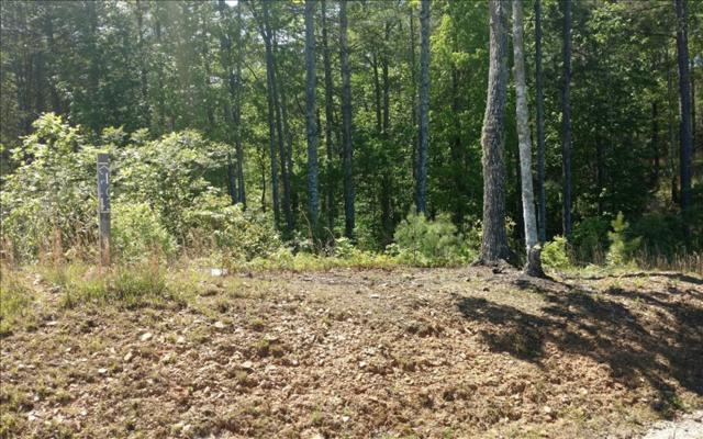 LT 43 Point Overlook Trail, Murphy, NC 28906 (MLS #267279) :: Path & Post Real Estate