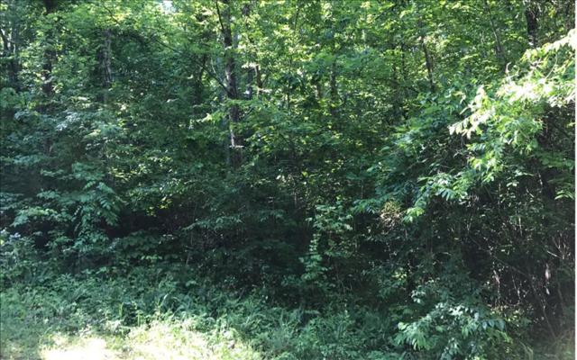 LT 8 Dewey Ridge, Hayesville, NC 28904 (MLS #267316) :: RE/MAX Town & Country