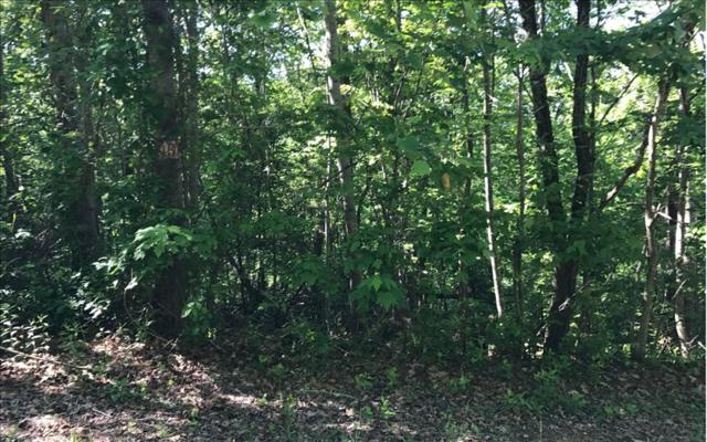 LT 13 Chatuge Crest, Hayesville, NC 28904 (MLS #267425) :: Path & Post Real Estate