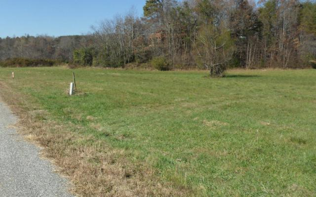 LT 8 Willow Bend Lot 8, Young Harris, GA 30582 (MLS #267853) :: RE/MAX Town & Country