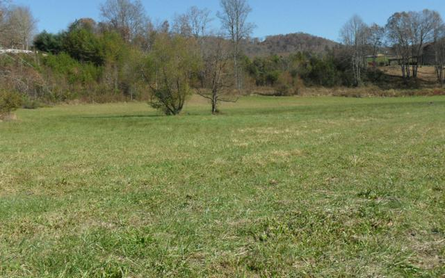 LT 9 Willow Bend Lot 9, Young Harris, GA 30582 (MLS #267854) :: RE/MAX Town & Country