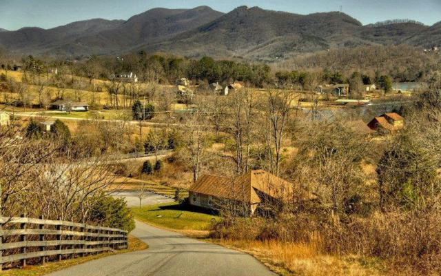 #40 Overlook Trail, Hiawassee, GA 30546 (MLS #267918) :: RE/MAX Town & Country
