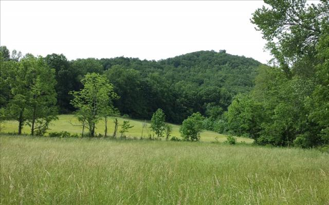 LOT12 Morning Mist Ln, Hayesville, NC 28904 (MLS #268437) :: RE/MAX Town & Country