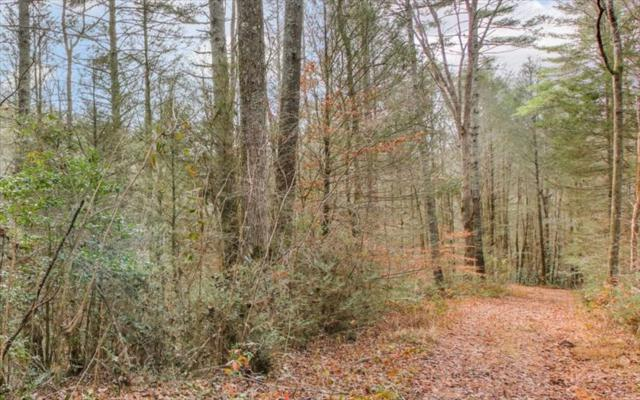 LOT 2 Double Knob Summit, Cherry Log, GA 30522 (MLS #269114) :: RE/MAX Town & Country