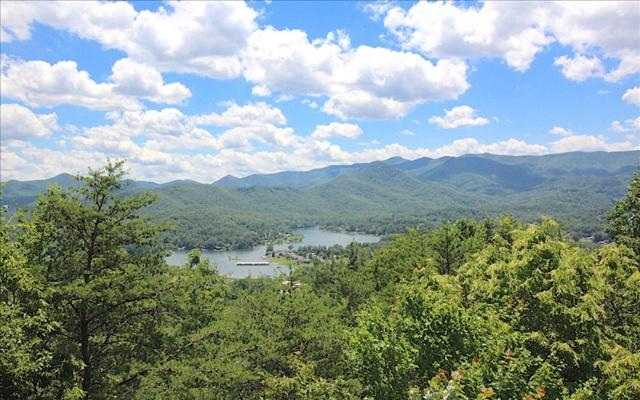 398 Bel Aire Dr., Hiawassee, GA 30546 (MLS #269374) :: RE/MAX Town & Country