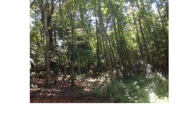 LOT 1 Winding Brook, Morganton, GA 30560 (MLS #269648) :: Path & Post Real Estate