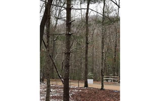 LOT 9 Winding Brook Lane, Morganton, GA 30560 (MLS #269656) :: Path & Post Real Estate