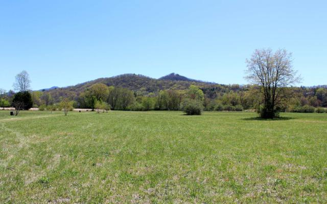 LOT 3 Pauls Meadows, Hayesville, NC 28904 (MLS #269773) :: RE/MAX Town & Country