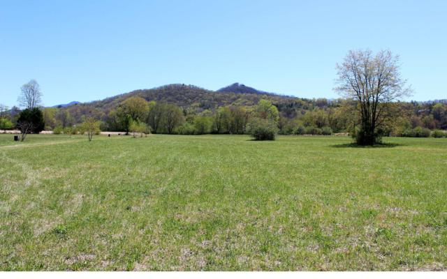 LOT 9 Pauls Meadows, Hayesville, NC 28904 (MLS #269780) :: RE/MAX Town & Country