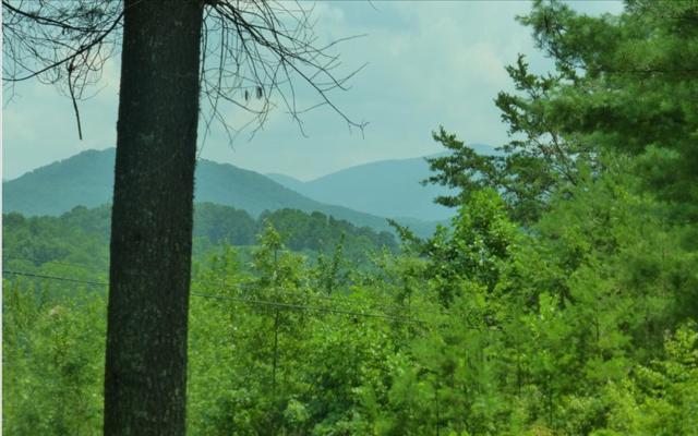 60 Carroll Rd., Blairsville, GA 30512 (MLS #270358) :: RE/MAX Town & Country